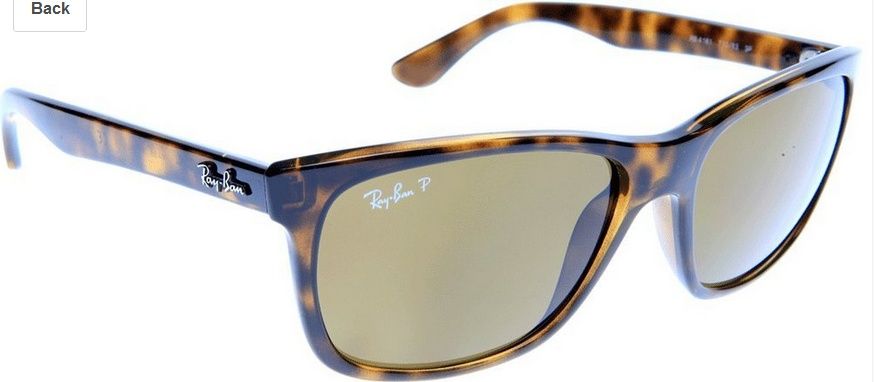 0RB4184 Polarized Square Sunglasses
