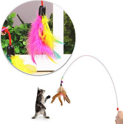Kitten Cat Pet Toy Wire Chaser Wand XISU Teaser Feather With Bell Beads Play Fun